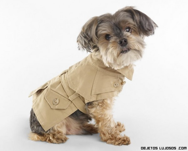 abrigos Ralph Lauren