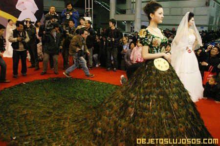 Vestido de Plumas de Pavo Real 4
