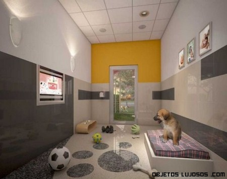 Hoteles de lujo para mascotas