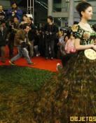 Vestido de plumas de Pavo Real